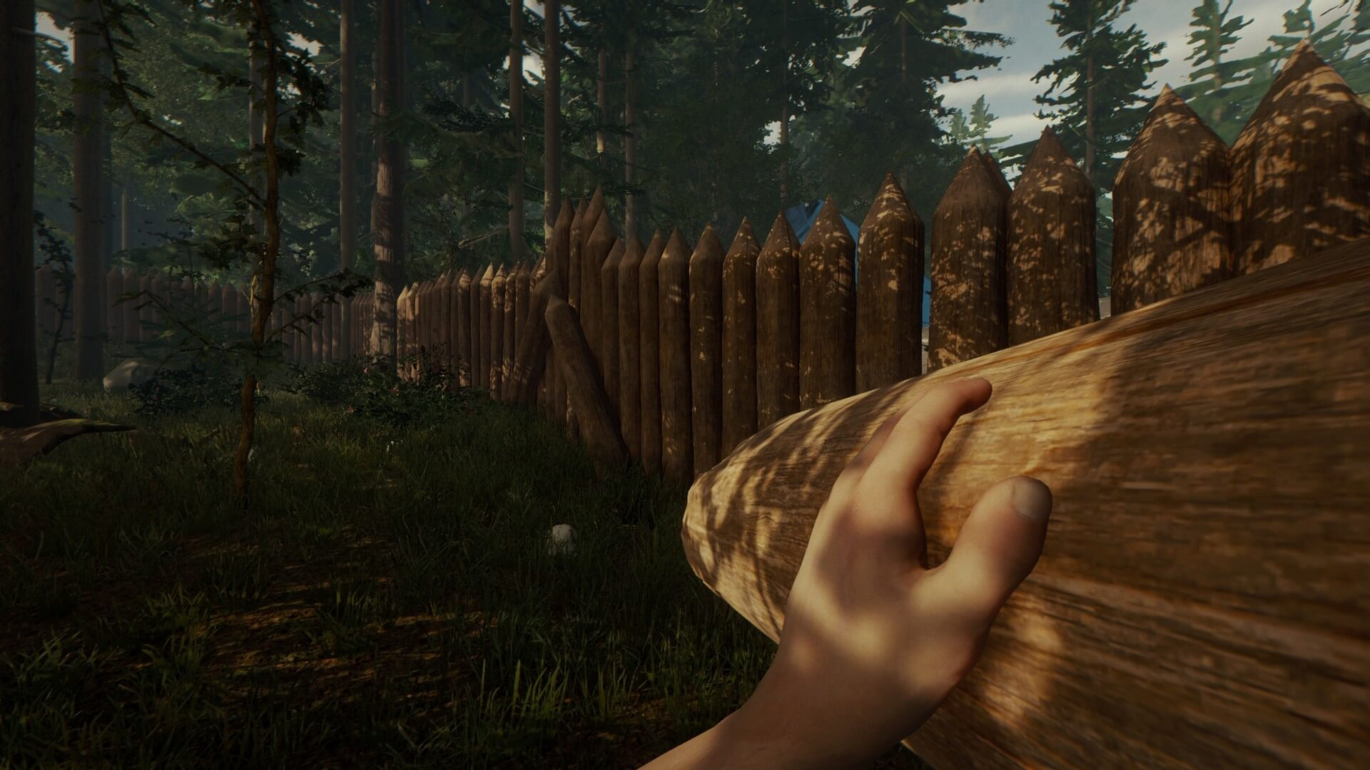 the-forest-steam-gift-sc3